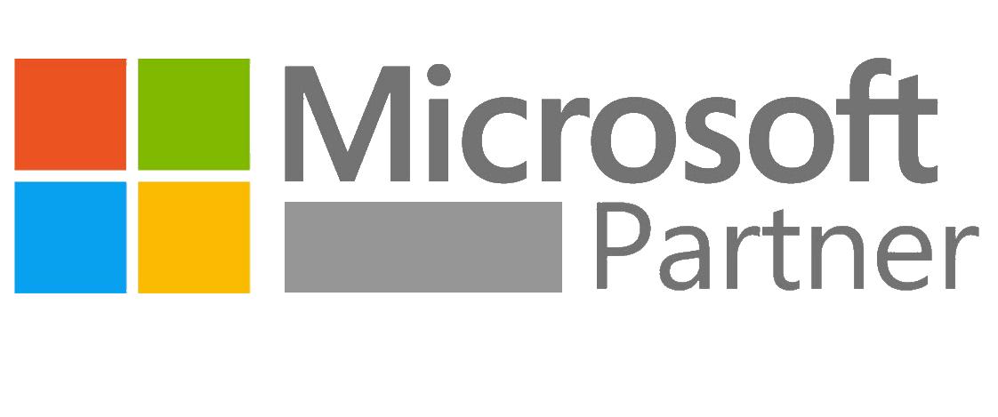 Microsoft gümüş partne EasyProject
